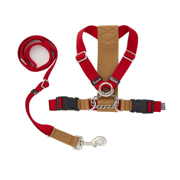 (Choke harness) Red/Camel